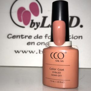 Vernis Permanent N°90541 Clay Canyon